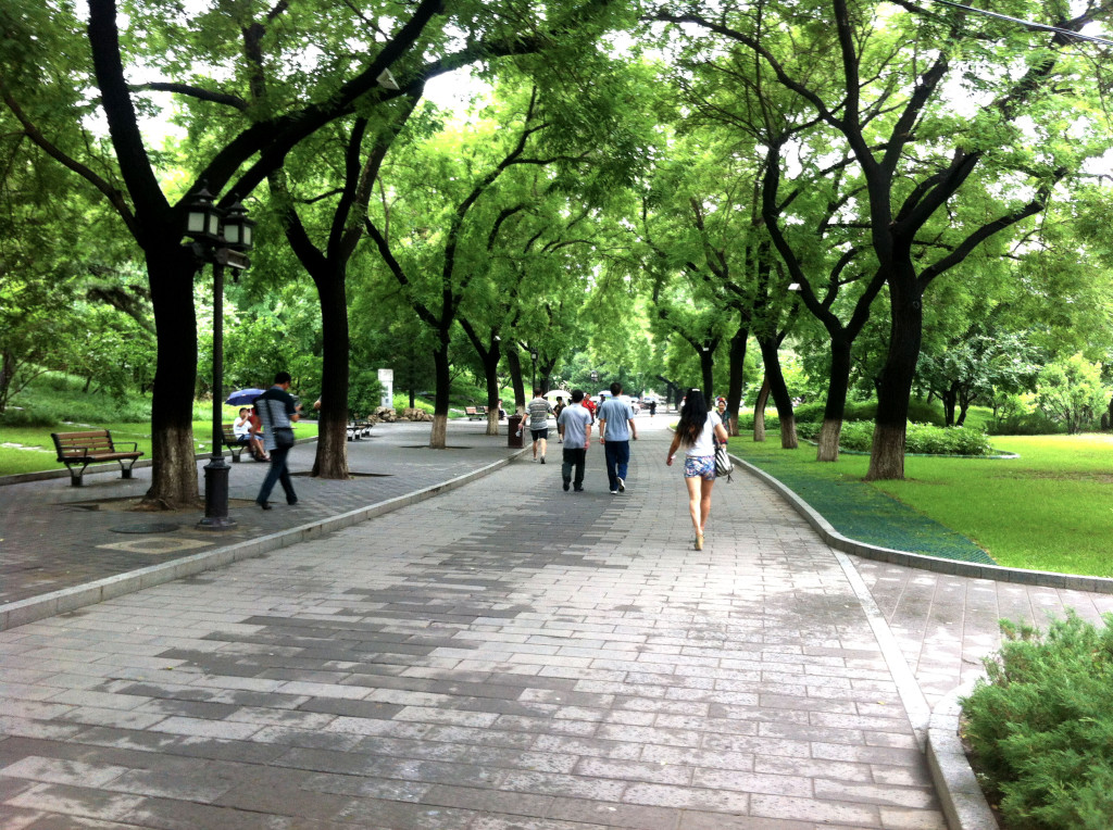 Taking a walk along Beihei Park. The lake is to the right of the photo.